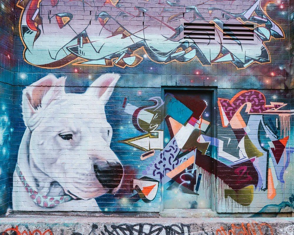 toronto-no-inverno-grafitti-alley-elen-pradera-blog-5586347