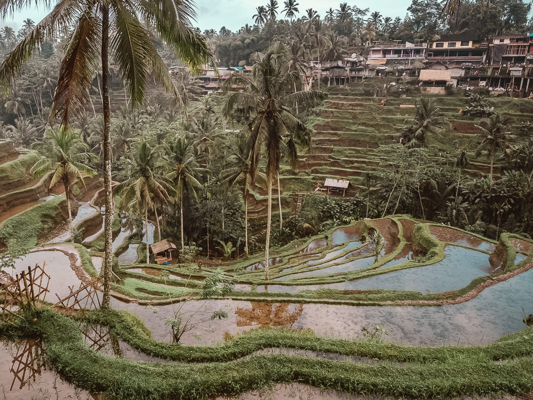 Things-to-do-in-Ubud-Bali-Indonesia