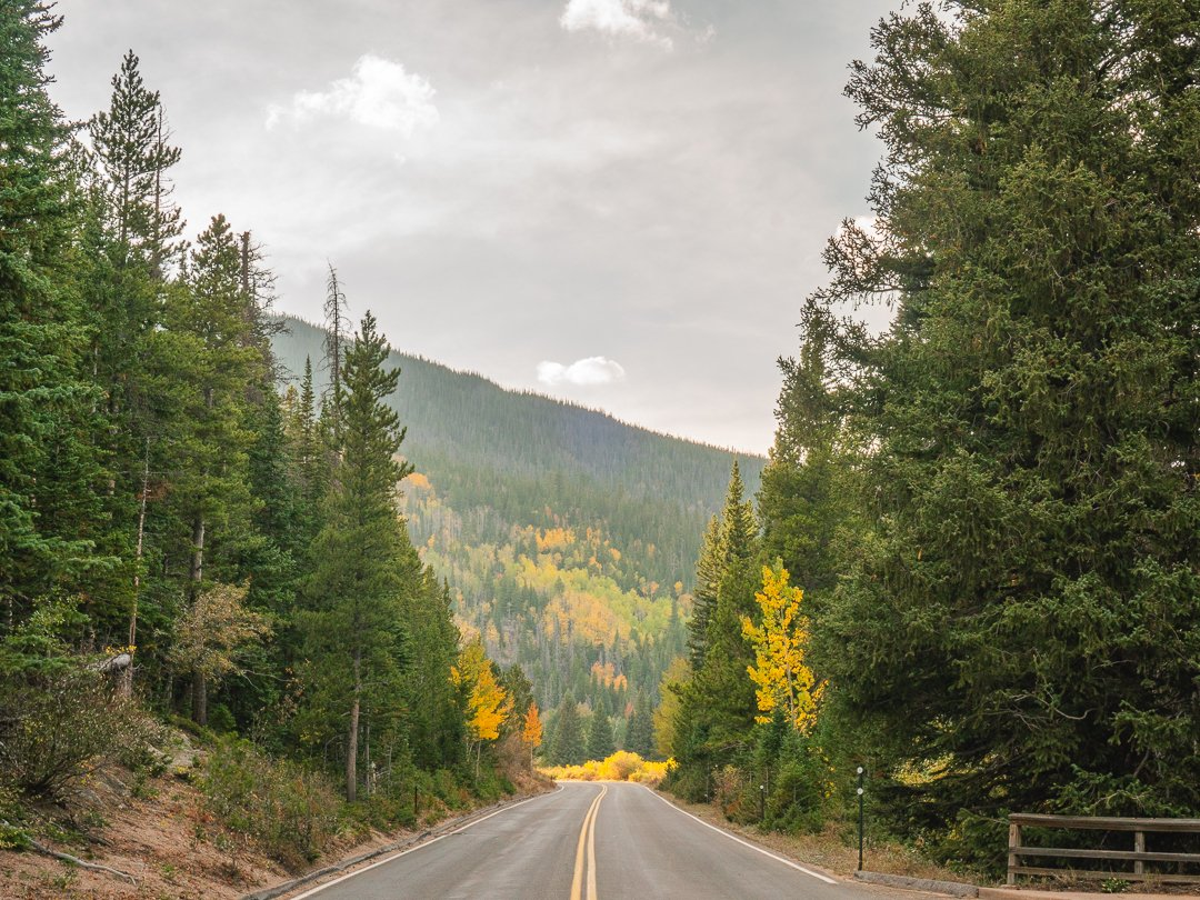 Road-at-Rocky-Mountain-National-Park