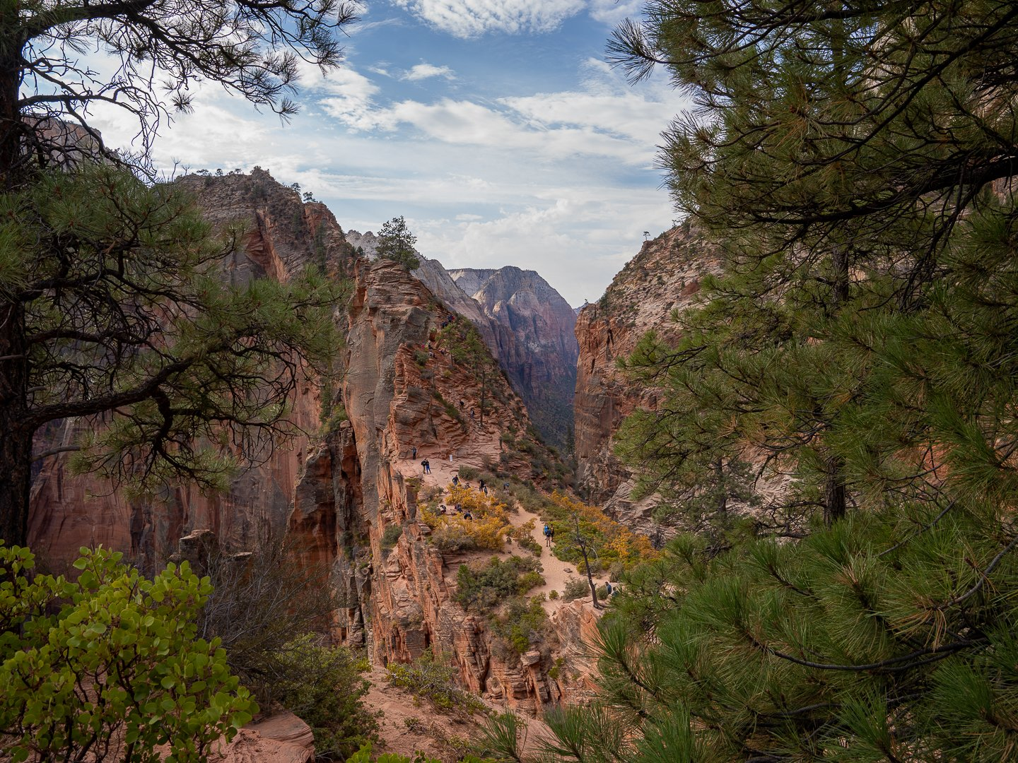 People standing at Scout Lookout near Angels Landing Cliff
