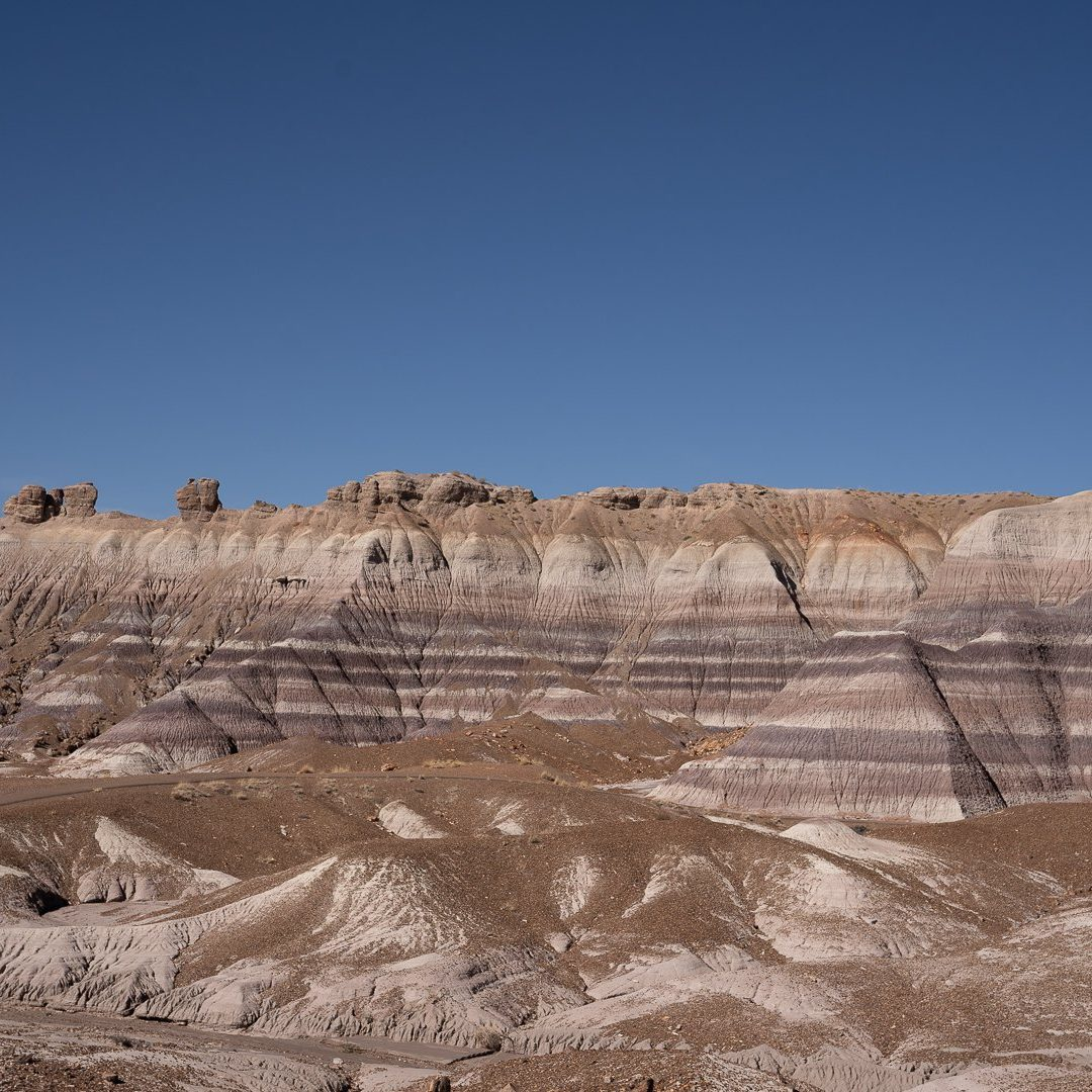 Petrified Forest National Park October 2020-01115